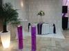 table d'honneur avec martini et composition florale, rideaux lumineux