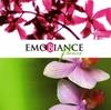 Emobiance Fleurs