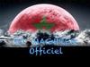 Dj Maghreb